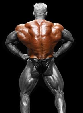 Nugaros raumenys